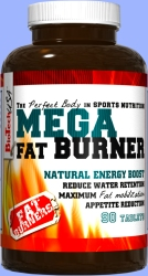 Mega FAT BURNER 90 Tabliet